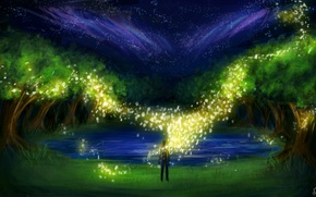 Picture grass, trees, night, lake, fireflies, people, lights, art, sparks