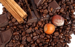 Picture food, chocolate, food, sweets, nuts, cinnamon, chocolate, sweet, hazelnuts, coffee beans, nuts, coffee, delicious, cinnamon