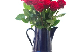 Picture red, flowers, pitcher, roses, bouquet