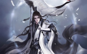 Picture bird, sword, feathers, Guy