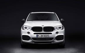 Picture BMW, E70, X5