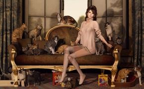Picture sofa, cats, face, legs, hair, girl, cats, sitting