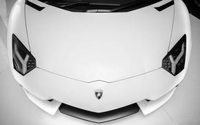 Picture white, lights, Lamborghini, supercar, white, supercar, front, aventador, lp700-4, Lamborghini, aventador