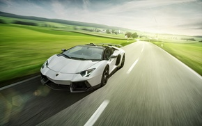 Picture Roadster, Lamborghini, LP700-4, Aventador, LB834, Novitec Torado
