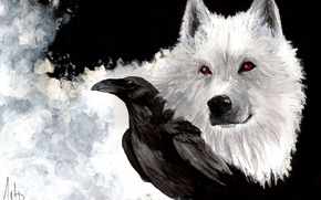 Wallpaper look, snow, art, wolf, white, beak, painting, Game of Thrones, Raven, Ghost