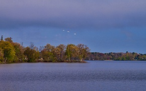 Picture autumn, the sky, clouds, trees, birds, lake