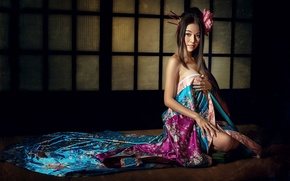 Picture geisha, East, a delicate matter
