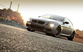 Picture black, plant, BMW, BMW, Matt, Blik, 645i, 6 Series, E63