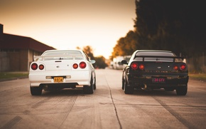 Picture Nissan, white, GT-R, black, skyline, Nissan, R34, skyline