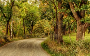 Picture road, autumn, Park, HDR, alley, road, autumn, parks