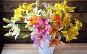 Picture Lily, bouquet, Bouquets, Lilies