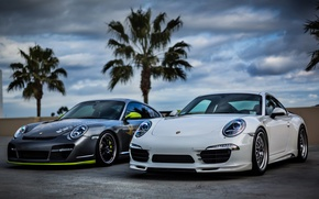 Picture white, the sky, clouds, palm trees, silver, 911, Porsche, silver, white, Porsche, sky, front, palm