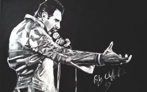 Picture picture, music, art, queen, mercury, mercury, freddie, Freddie