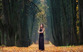 Picture autumn, girl, alley