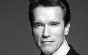 Wallpaper black and white, Arnold Schwarzenegger, the Governor