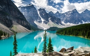 Picture trees, mountains, lake, Banff National Park, Moraine Lake