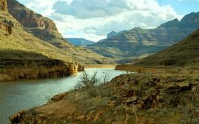 Picture river, USA, USA, river, The Grand Canyon, Grand Canyon