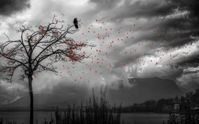 Picture leaves, tree, bird, treatment, falling leaves, Gone but not forgotten