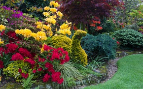 Picture grass, trees, flowers, design, lawn, England, garden, the bushes, Walsall Garden