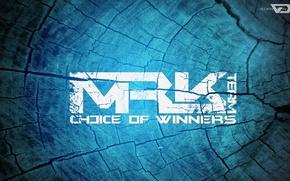 Picture game, logo, texture, team, 2014, logotype, css, mrk