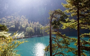 Wallpaper forest, the sun, rays, mountains, nature, lake