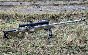 Picture grass, optics, sniper rifle, sako trg 22