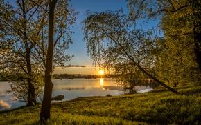 Picture the sky, the sun, trees, lake, dawn, shore, Croatia, Lake Oresje