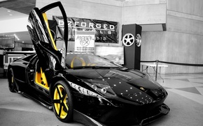 Picture Lamborghini, the door, black, vertical, Murcielago