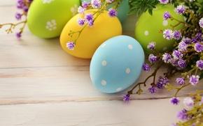 Wallpaper flowers, holiday, eggs, branch, spring, Easter, Easter, Easter