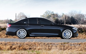 Picture black, BMW, BMW, profile, drives, black, f10, tinted