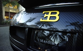 Wallpaper veyron, carbon, Bugatti, supercar, supercar, Bugatti, Veyron, black, carbon, black, mansory