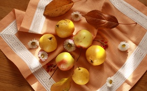 Wallpaper napkin, still life, beautiful, fruit, pear, apples, autumn