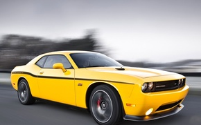 Picture Dodge, challenger, muscle cars