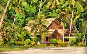 Picture house, palm trees, island, hut, Bungalow, Philippines, Samal