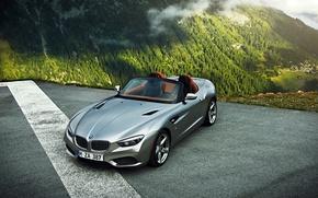 Picture Roadster, BMW, Mountain, Zagato, Silver, Fog