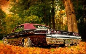 Picture auto, autumn, nature, Shine, Chevrolet