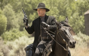 Picture weapons, horse, frame, hat, gloves, the series, cowboy, revolver, Western, TV Series, Ed Harris, Westworld, …