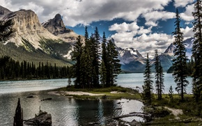 Picture forest, snow, mountains, nature, lake, island, tree