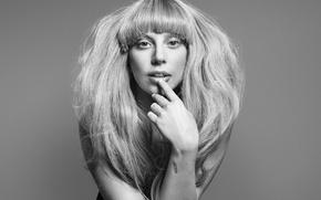 Picture girl, style, music, woman, music, actress, singer, girl, fashion, celebrity, fashion, women, singer, Lady Gaga, …
