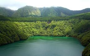Wallpaper trees, lake, mountains