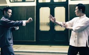 Picture cinema, fighter, man, fight, movie, film, martial artist, kung fu, door, posture, Donnie Yen, wushu, …