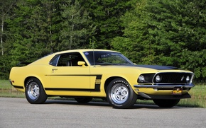 Picture yellow, mustang, Mustang, 1969, ford, muscle car, Ford, yellow, muscle car, 302, boss
