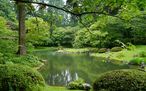 Picture greens, grass, trees, branches, pond, Park, Canada, Vancouver, the bushes, Nitobe Garden