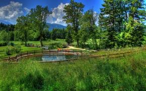 Picture grass, landscape, nature, photo, Germany, Bayern