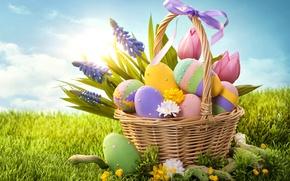 Wallpaper grass, flowers, holiday, basket, eggs, spring, Easter, bow, Easter, Easter