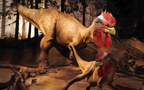 Wallpaper dragon, dinosaur, monster, cock