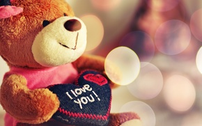 Wallpaper toy, plush, I love you, bear, heart