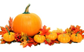 Picture autumn, leaves, background, pumpkin