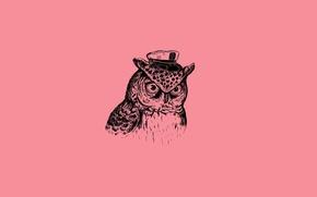 Wallpaper Minimalism, Minimalism, Bird, Art Print, Alejandro Giraldo, Captain Owl, Captain Owl