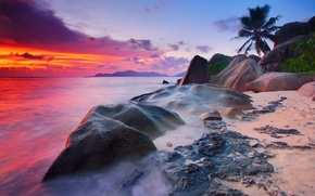Picture sea, beach, the sky, water, clouds, trees, stones, palm trees, rocks, the evening, morning, excerpt, ...